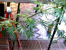 prouve's tropical house, Hammer atrium