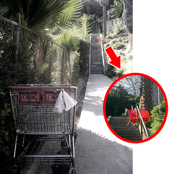 the shopping cart stairwell
