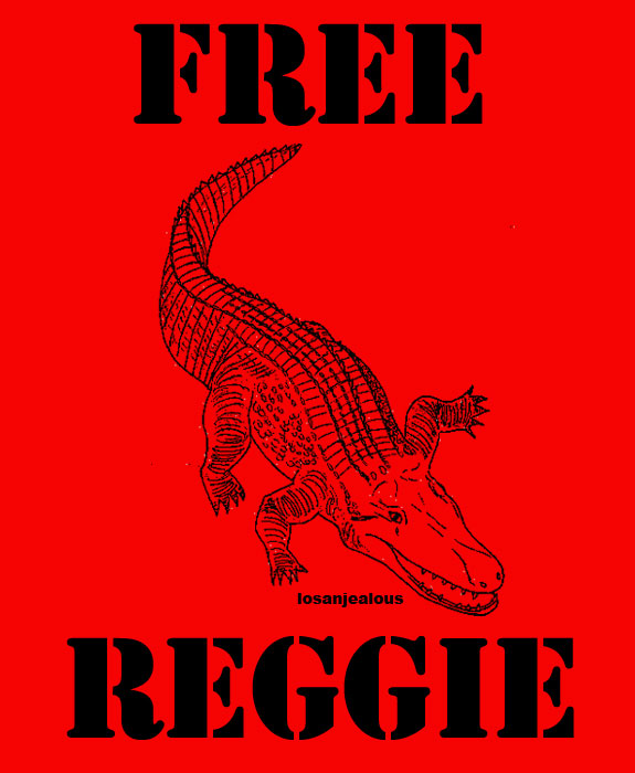 FREE REGGIE!