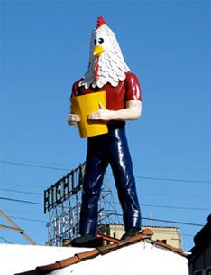 chickenboy