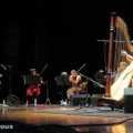 joanna_newsom_orpheum_theater_07-31-10_12