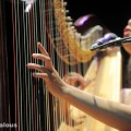 joanna_newsom_orpheum_theater_07-31-10_20