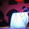 Avey_Tare_Center_for_the_Arts_12-09-11_07