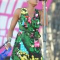 Fitz_Tantrums_Coachella_2012_04