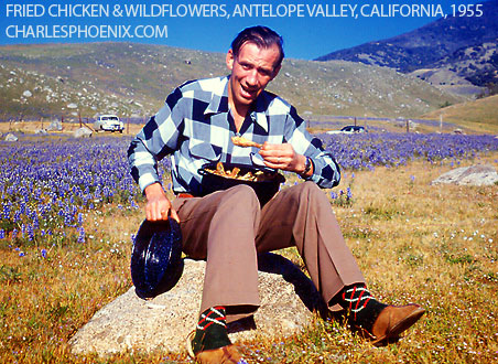 Charles Phoenix's Slide of the Week: Wildflowers & Fried Chicken, Antelope Valley, 1955