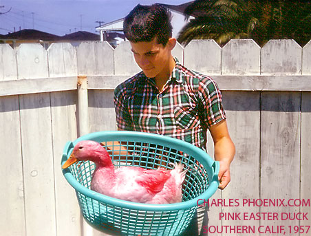 Charles Phoenix's Slide of the Week: The Pink Easter Duck, Southern California, 1957