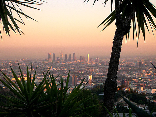 Los Angeles Januaries: Why We Live Here