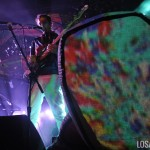 Animal_Collective_2014_TIMF_02