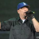 Ice-T_Art_of_Rap_Festival_2015 (13)